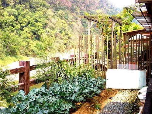 我家咖啡屋 民宿|福氣果子 原 賓拉登草莓園|大湖酒莊|苗栗大湖採草莓