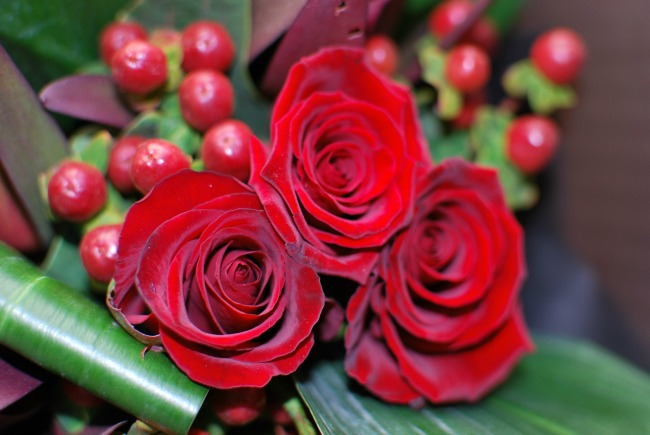 Prestige-Flowers-For-Valentines-day-A-Review-roses-and-hypericum-berries