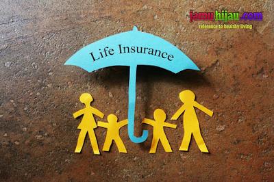 cara tepat dalam memilih jenis asuransi jiwa, life insurance, jamu hijau