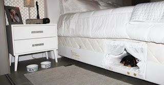 This Bed Contains A Bed For Your Cat Or Dog To Sleep Next To You