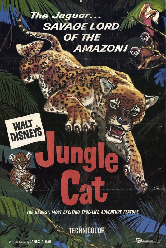 Jungle Cat (1960)