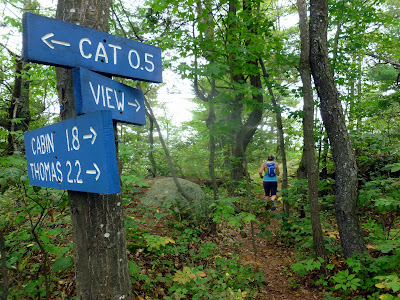Overlook on the Thomas - Cat ridge trail.  The Saratoga Skier and Hiker, first-hand accounts of adventures in the Adirondacks and beyond, and Gore Mountain ski blog.