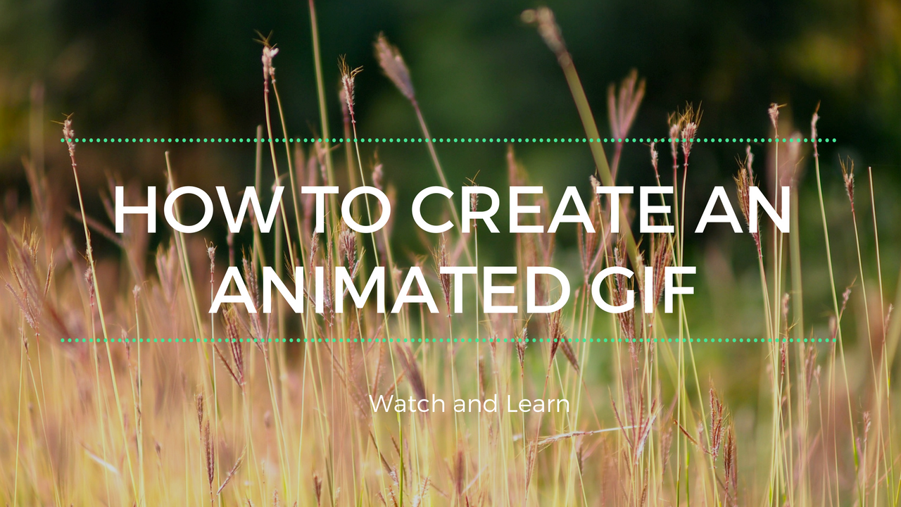 How to Create an Animated GIF
