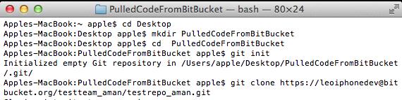 Bitbucket Code Pull2