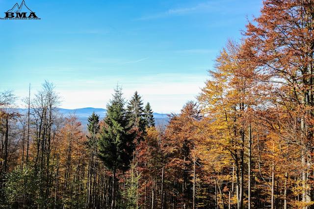 Rachel wandern Nationalpark Bayerischer Wald Horizontalsteig
