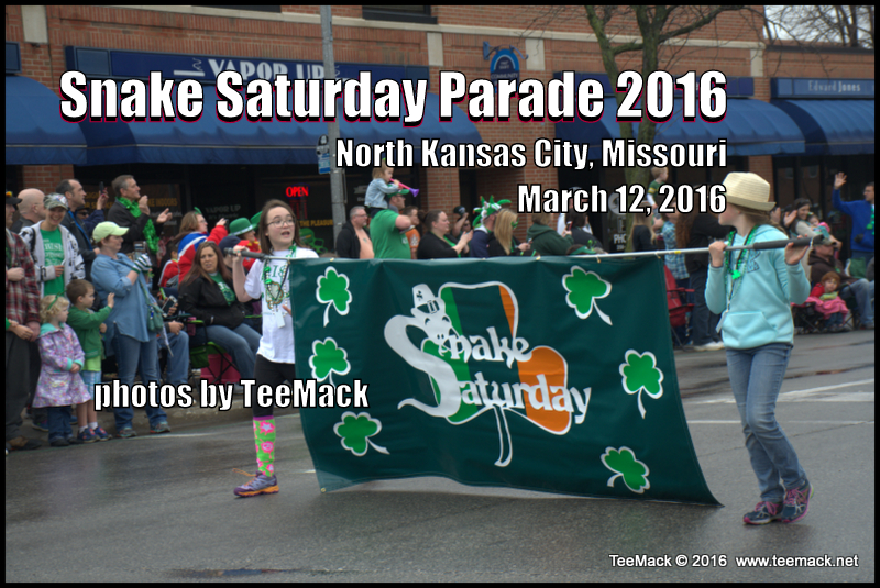 festival snake saturday parade - 800×535