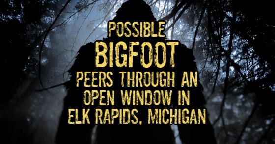 Possible Bigfoot Peers Through An Open Window in Elk Rapids, Michigan