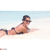 Natasa Stankovic Beautiful Indian Super Model in Bikini Vacation Pics Exclusive ~  Exclusive 013.jpg