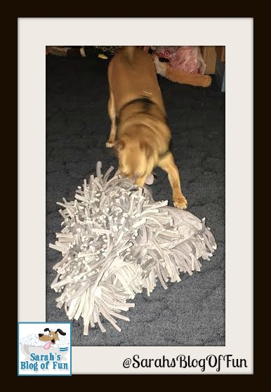 Sarah's Blog Of Fun Holiday Gift Guide: Wooly From PAW5 ...
