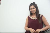 Nikki Galrani in a Brown Shining Sleeveless Gown at Nakshatram music launch ~  Exclusive 017.JPG