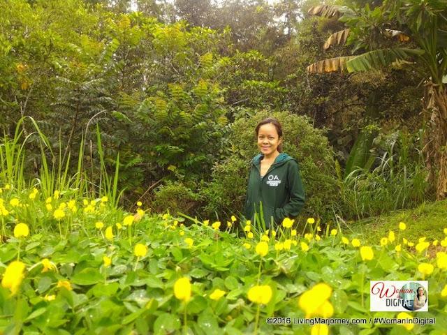 OABloggerAko in Bukidnon