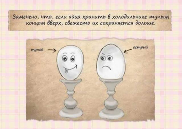 как лучше хранить яйца