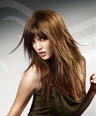 corte pelo largo liso castaño en capas