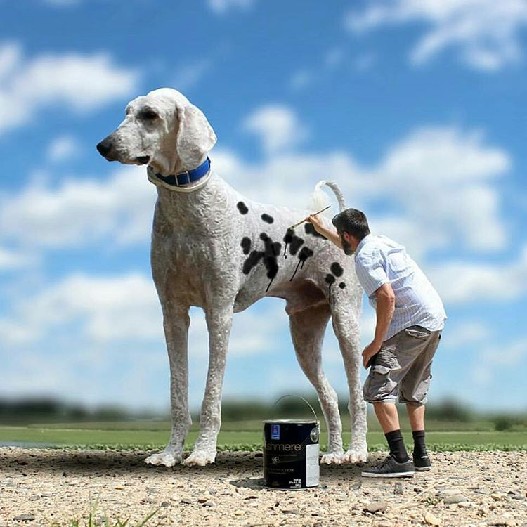 13-This-is-not-Funny-Christopher-Cline-Juji-The-Giant-Dog-Photo-Manipulations-www-designstack-co
