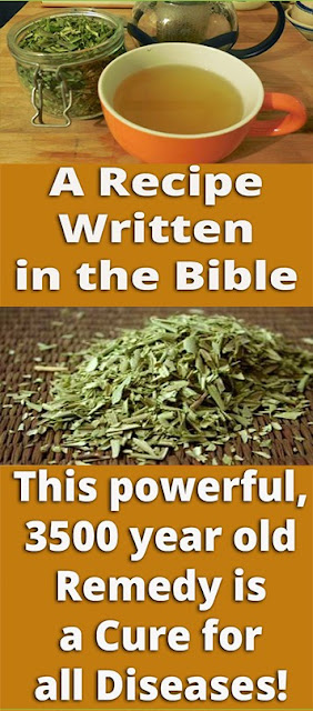 Recipe Written In The Bible: This Powerful, 3,500 Year-Old Remedy Cures All Diseases!
