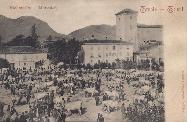 Piazza di Fiera a Trento