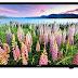Harga dan Kelebihan TV LED Samsung UA40J5000 Seri 5 40 Inch