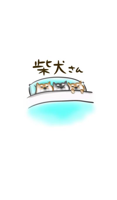 Japanese Shiba inu simple