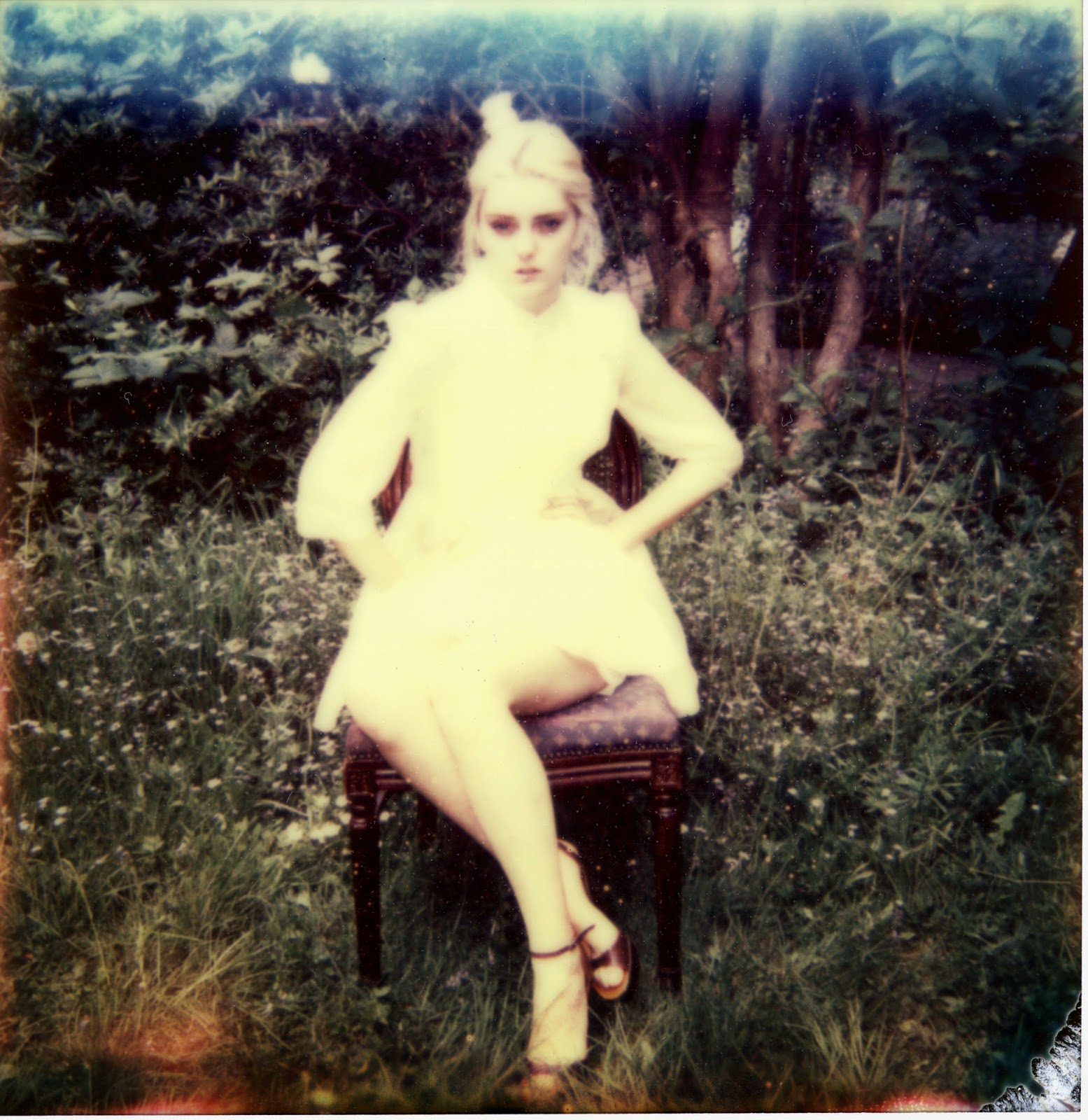 Polaroid by Alice Solantania Saga