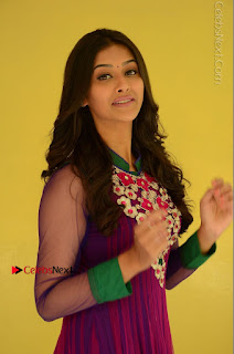 Actress Pooja Jhaveri Latest Stills in Purple Salwar Kameezt at Dwaraka Success Meet  0060.JPG