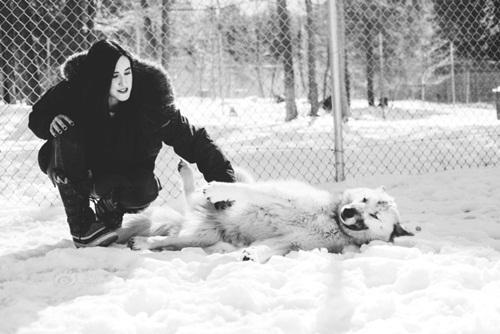 Điều trị bệnh trầm cảm ở chó