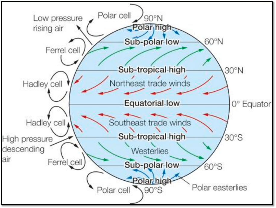 Geogblogdno y11 living with the phys env section b living world using the diagram showing the global atmospheric circulation provided explain the distribution of trf shown on your map ccuart Images
