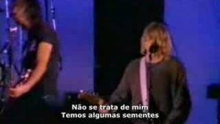Nirvana - Polly legendado