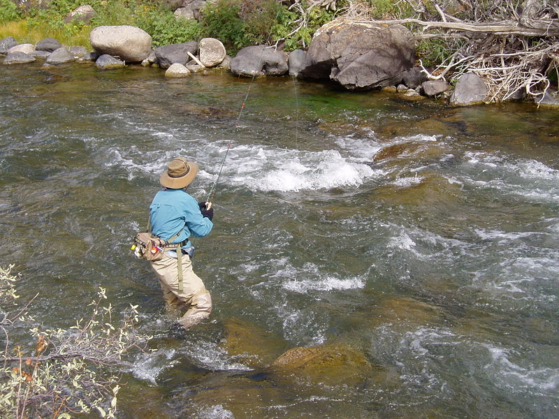 One Of The Great Outdoor Activities In Gatlinburg And The Great Smoky  Mountains National Park Is Trout Fishing. Whether Youu0027re A Pro Or Just Got  Your First ...