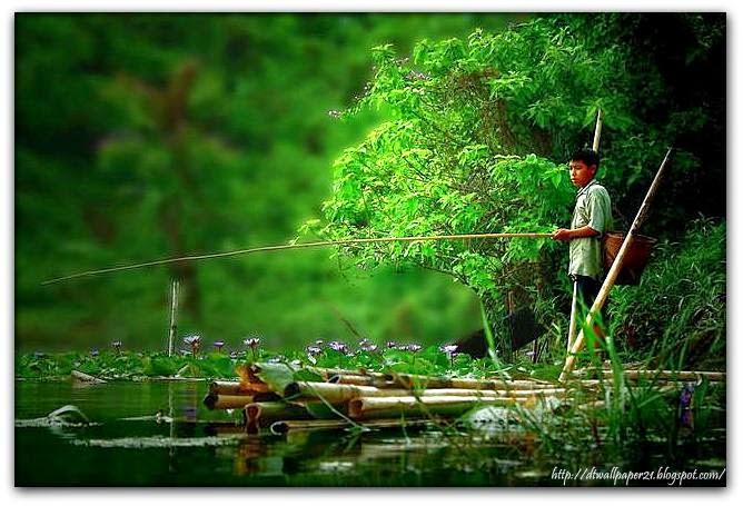 nature wallpapers of bangladesh: Nature Of Bangladesh
