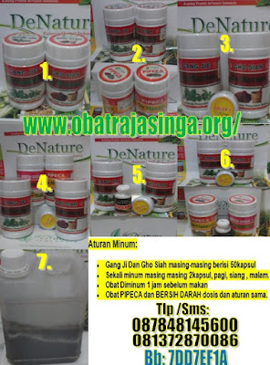 obat pembasmi bakteri penyebab kencing