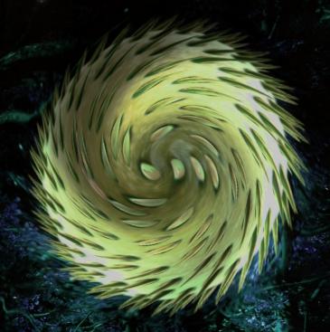 Illusztráció vershez, nonfiguratív, fraktálszerű, spirálalakú, tüskés, baktériumra emlékeztető sárga alakzat lebeg a világűrben galaxisok között.