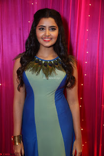 Anupama Parameswaran in lovely shaded gown ~  Exclusive 31.JPG