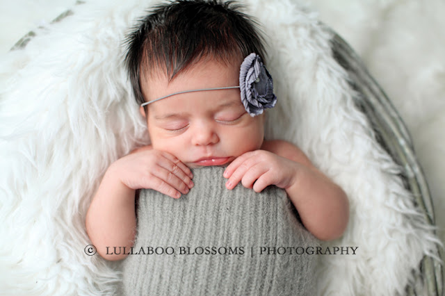 Baby photography child photography family photography and maternity photography lullaboo blossoms photography serves the gta greater toronto area