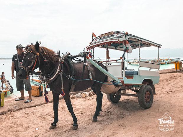islas gili cual elegir cual es mejor carro caballos