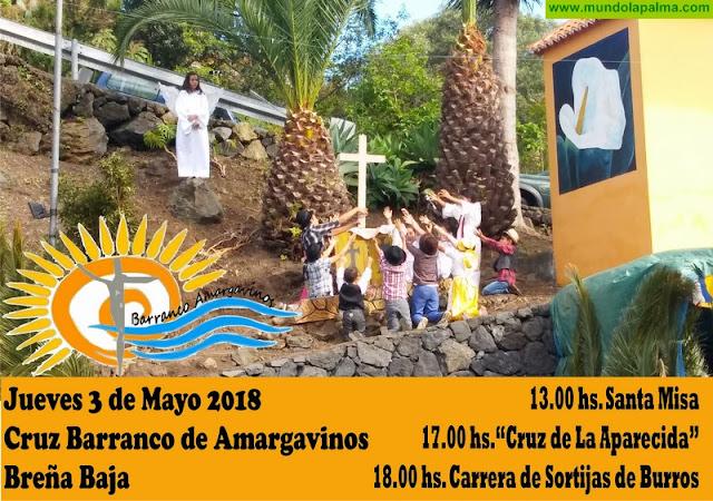 CRUZ DE AMARGAVINOS: Santa Misa, Cruz de Aparecida y Carrera de Sortijas con Burros