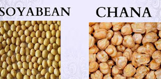 NCDEX Chana Tips Intraday