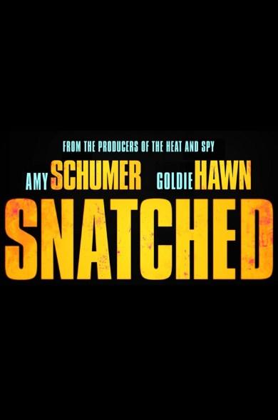 Sinopsis / Alur Cerita Film Snatched (2017)