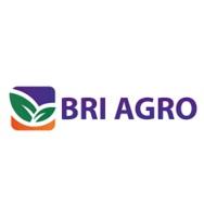 Logo PT Bank BRI Agro