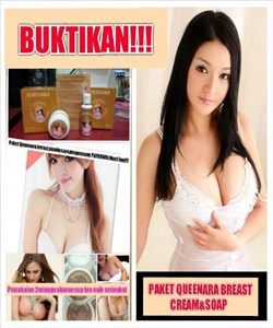 Paket Qweenara Breast Cream