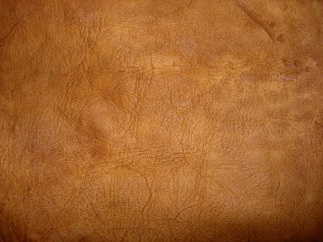Bark Tanned Deer Hide Sustainable Living Project