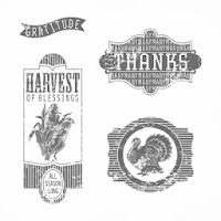 Elaine's Creations: Pop n' Cuts Harvest of Thanks Matchbox
