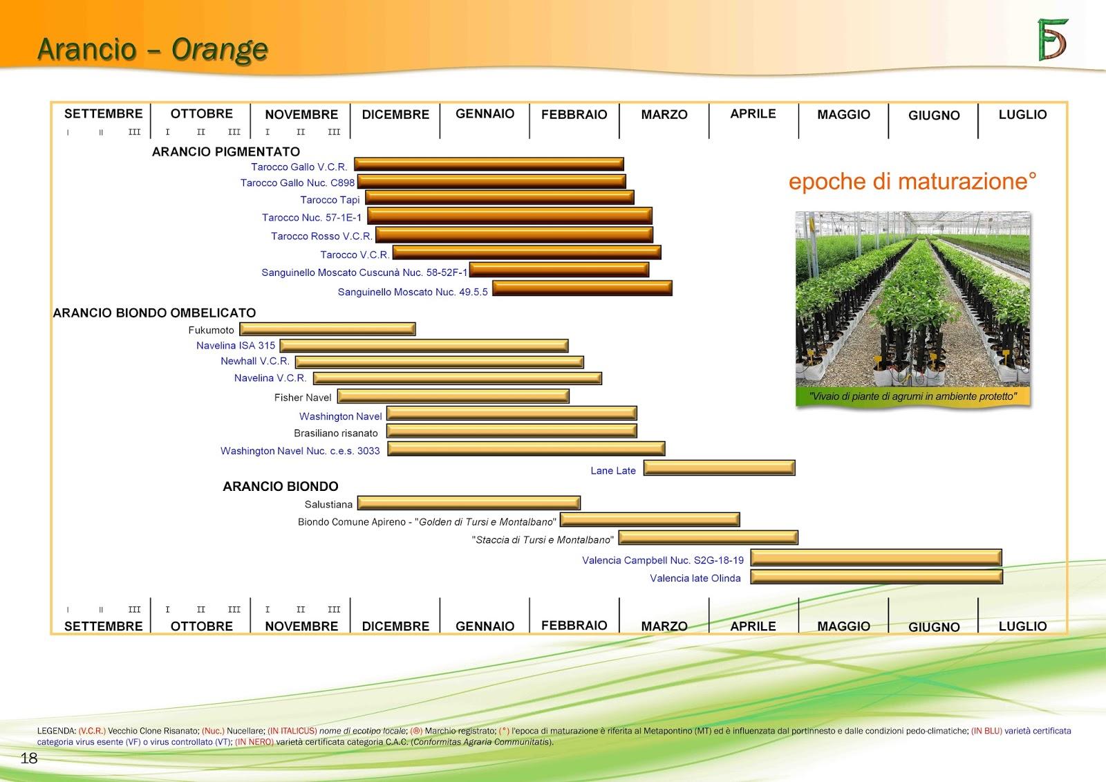 Agriculture consulting agronomist dell 39 agronomo vito for Calendario concimazione agrumi