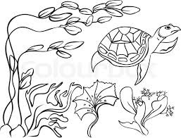 Cute Turtle On The Sea Coloring Sheet Animals For Print