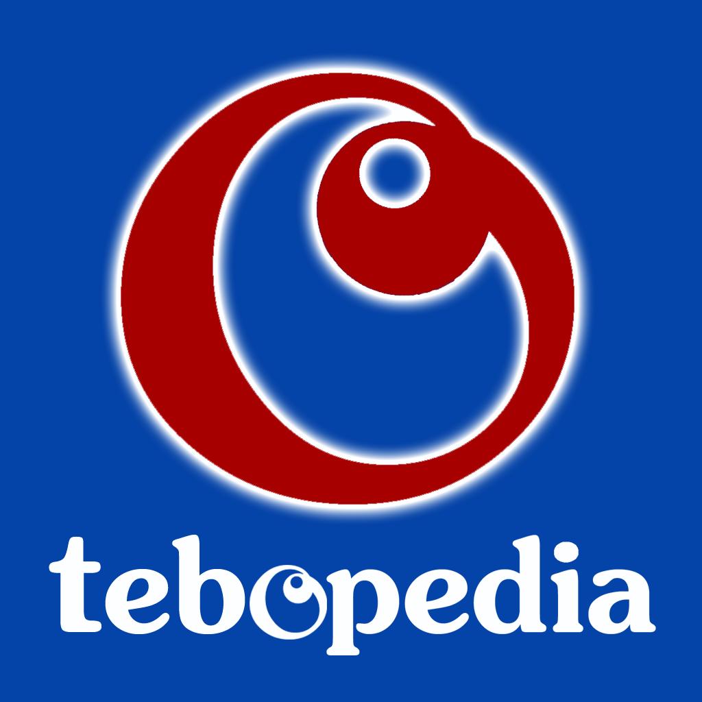 tebopedia - Membangun Generasi Untuk Negeri