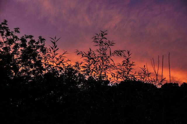 sunset at Carrog Station