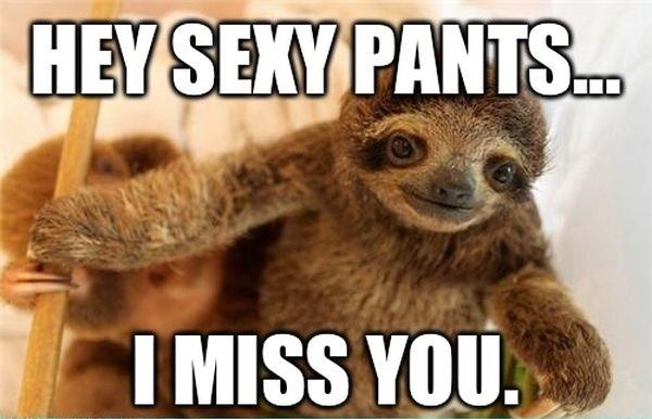 i miss you meme  10