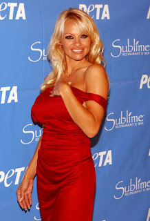 Hollywood Actress Pamela Anderson
