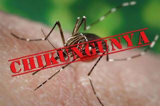 Chikungunya explode na Paraíba e Pedra Lavrada e Nova Floresta tiveram aumentos consideráveis