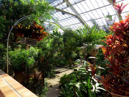 Matthaei Botanical Garden conservatory