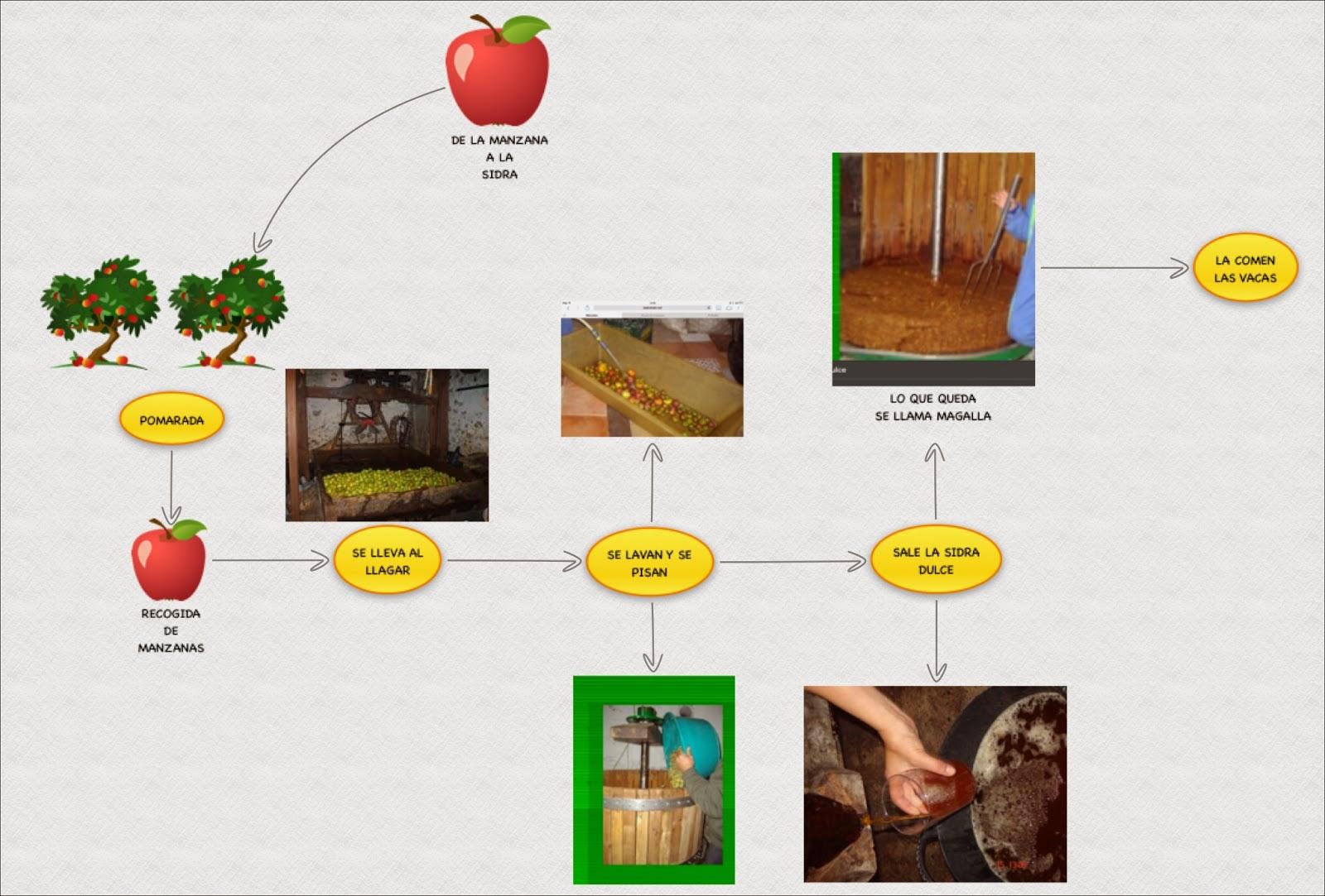 De la Manzana a la Sidra. Secuencia Didáctica para Infantil ...